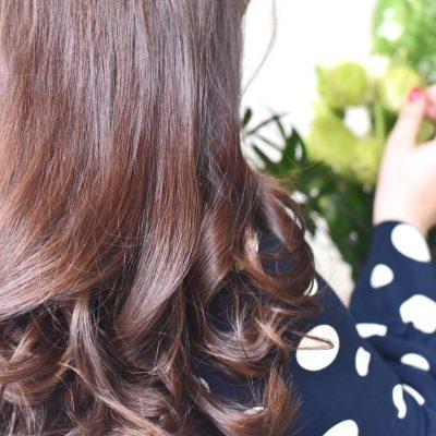 Die neue DESSANGE Nährendes Elixier Haarpflege Linie